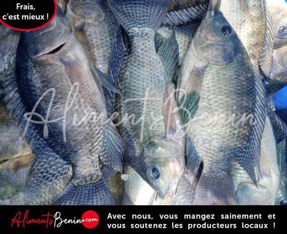 ABC_PRODUITS BENIEL_FISH Akpavi