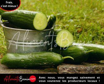 Aliments Benin_PRODUITS_Comcombre