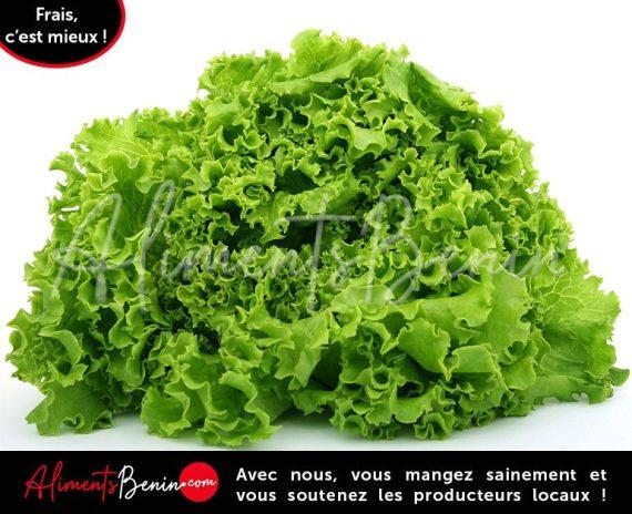 Aliments Benin_PRODUITS_Laitue