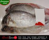 Aliments Bénin PRODUITS_Express_Services_Poisson