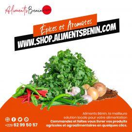 Epices et Aromates Aliments Benin(1)